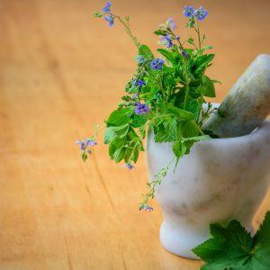 Plantes médicinales ou odorantes (infusion ou autres)